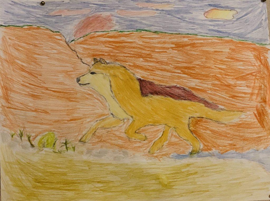 """AJ G """"Wild Wolf in the Rio Grande"""" age 12"""
