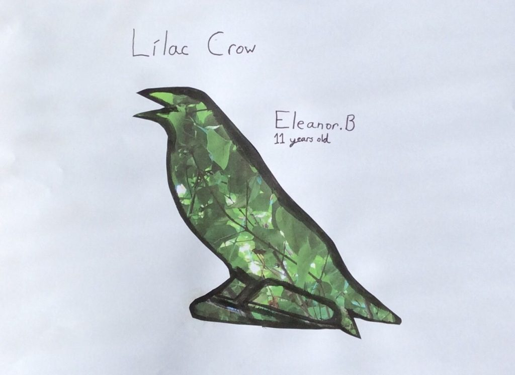 "Eleanor B ""Lilac Crow"" age 11"