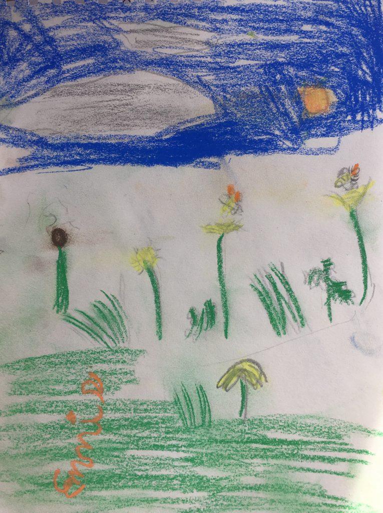 "Ennis L age 6 ""Nature Field"""