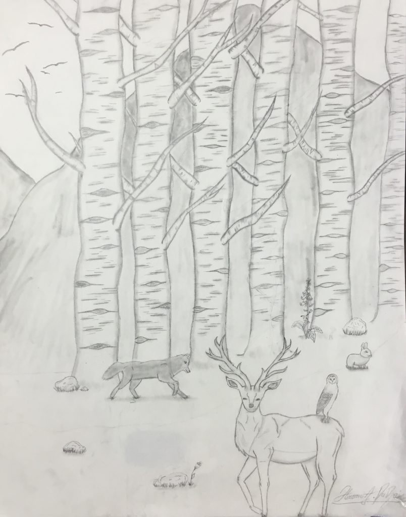 """Hiromi D """"Peace in the Woods"""" age 12"""